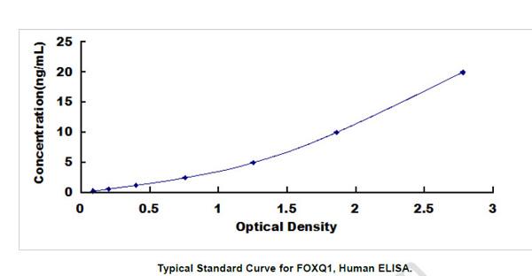 Human FOXQ1 ELISA Kit