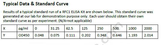 Human RFC1 ELISA Kit