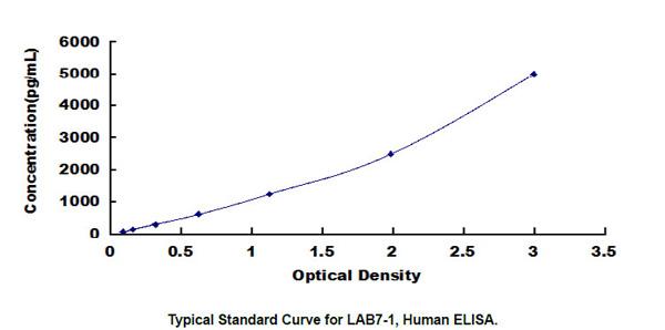 Human LAB7-1 ELISA Kit